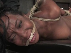 Luscious ebon doxy receives fastened up and tortured