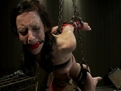 Elise Graves had not ever tortured that hard