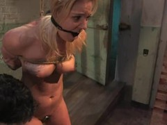 Hollie Stevens receives tortured, whipped jointly with drilled remarcably well